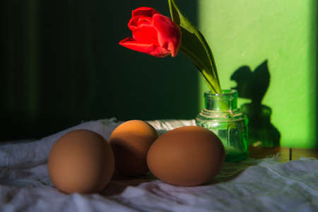 Brown fresh eggs with red tulip in sunlight . Close up