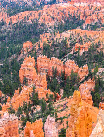 Landscape and formations in Bryce Canyon Stockfoto