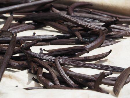 French Polynesia Tahiti Vanilla, short before ready to sell