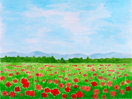 field and sky: Poppy Flowers Meadow or Summer Landscape Watercolor Hand Painted Stock Photo