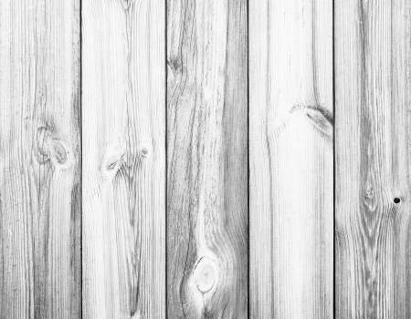 birches: White Wood Planks as Background or Texture, Natural Pattern