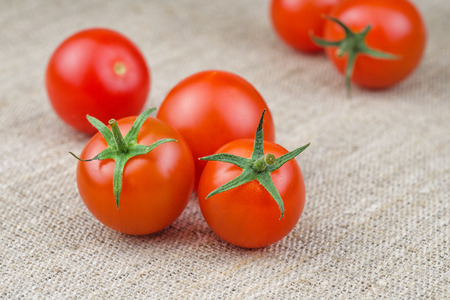 bagging: Ripe Fresh Cherry Tomatoes on Coarse Fabric or Bagging Background