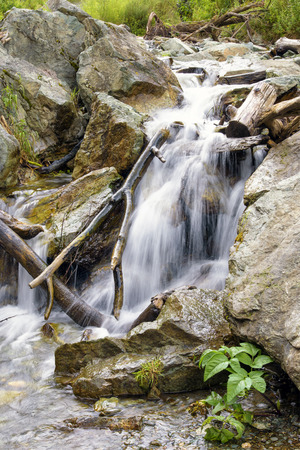 wild silky white: Closeup of Beautiful Waterfall Stream Flowing among Stones