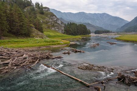 Summer Landscape: Wooden Logs on Mountain River Flowing along Little Canyon Stock Photo