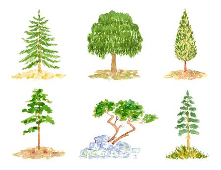Aquarel Hand Set van bomen, getekend en geschilderd, geïsoleerd op wit
