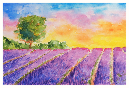 Summer Landscape: Booming Violet Lavender Field and Single Tree at Sunset, Watercolor Hand Drawn and Painted