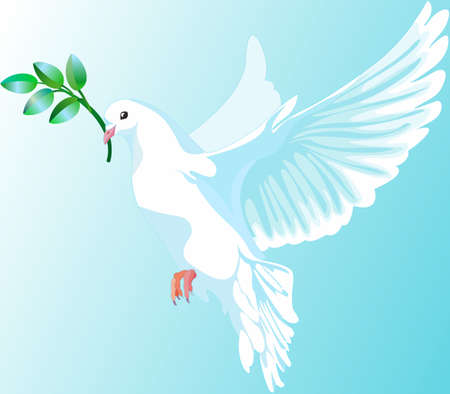 This is a white dove of peace, it is keeping the a green branch Illustration