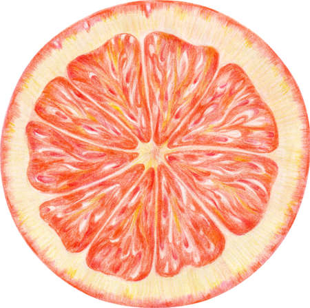 The  orange is a drawing, it was created by pencils Stock Photo