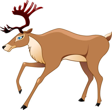 The figure of the deer in a vector Illustration