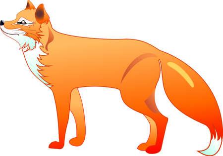 La silhouette du renard roux dans un vecteur