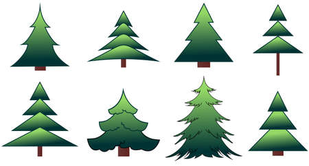 conifers: The set of the fir-trees and pines in vector