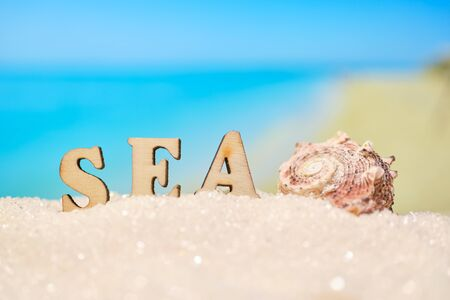 The word sea seashell with abstract sand with blurry photo of sea and beach. Close up.
