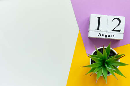 12th august - twelfth day month calendar concept on wooden blocks with copy space 写真素材
