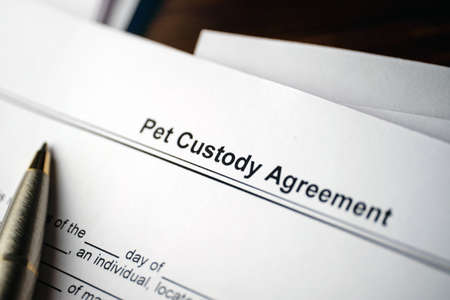 Legal document Pet Custody Agreement on paper.