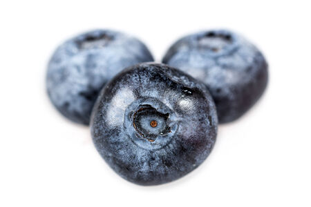 Three blueberries isolated on white background