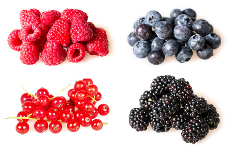 Blackberries, blueberries, raspberries and red currant