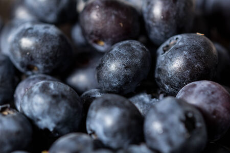 Fresh blueberries background 版權商用圖片