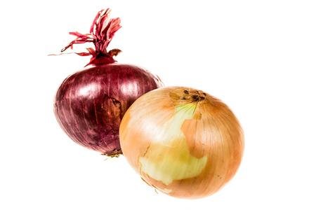 onion isolated: