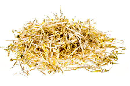 bean sprouts: Bean sprouts on white background Stock Photo