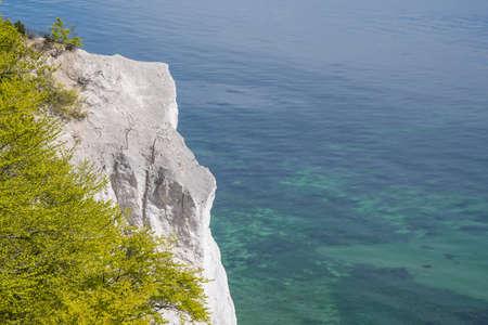 Moens klint chalk cliffs in Denmark on a summer day