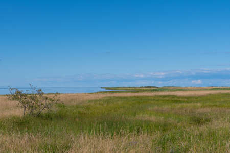 Beautiful nature landscape on Ulvshale on island of Moen in Denmark on a sunny summer day Stock Photo - 131321428