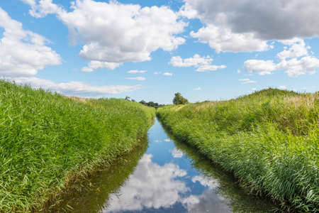 drainage channel near Avno in Denmark on a sunny summer day