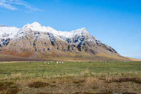 Kalfafellsdalur valley in South Iceland on a sunny autumn day Stock Photo - 131321689