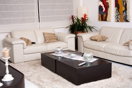 Modern living room with modern furniture Stock Photo - 7169131