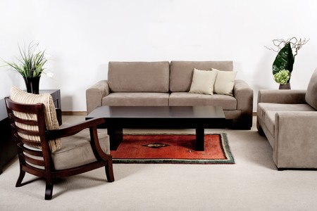 brownish: Well decorated modern living room interior with brownish couches