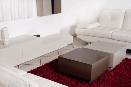 Modern interior of a room with white leather couch and fury red carpet photo