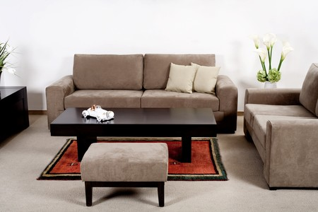 Neat and clean modern living room with classic couch photo