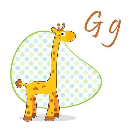 jirafa fondo blanco: Ilustración de g para la jirafa sobre fondo aislado