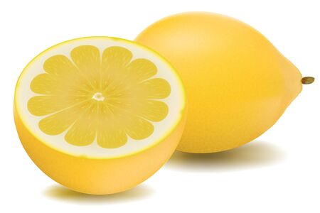 with lemon: illustration of lemon in isolated background