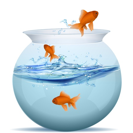 goldfish jump: illustration of fish tank on white background