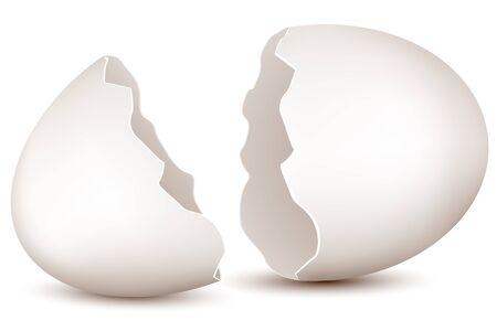 eggshells: Ilustraci�n de huevo roto sobre fondo blanco Vectores