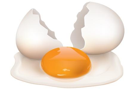uovo rotto: illustrazione di uovo rotto su sfondo bianco Vettoriali