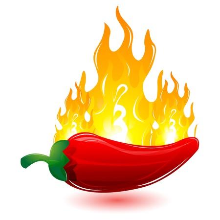 quemadura: Ilustraci�n de aj� rojo con fuego sobre fondo blanco
