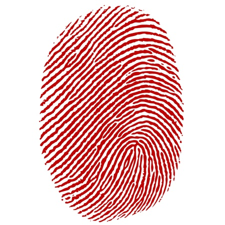 thumb print: illustration of thumb impression on white background