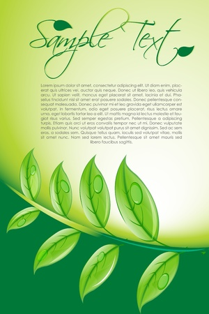 illustration of natural card with leaf Vector