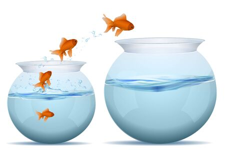goldfish jump: illustration of jumping fishes on tank on white background