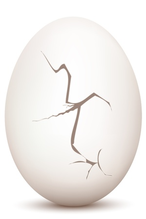 eggshells: illustration of cracked egg on white background