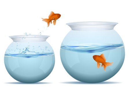 goldfish jump: illustration of jumping fish in tank on white background