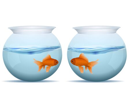 gold fish bowl: illustration of fishes in tanks