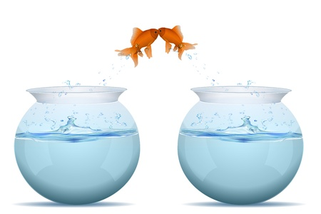 goldfish jump: illustration of fishes jumping from tank on white background