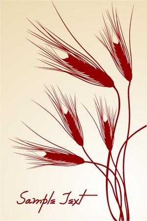centeno: Ilustraci�n del icono de grano sobre fondo blanco Vectores