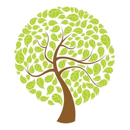 illustration of natural tree on white background