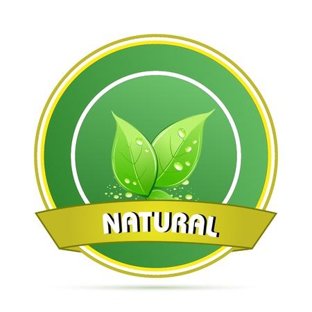 illustration of nature logo Stock Vector - 8637318
