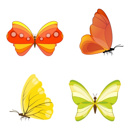 illustration of colorful butterfly on white background Illustration