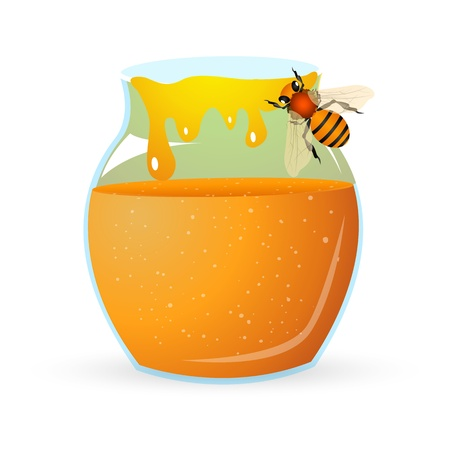 honey jar: illustration of bee with honey on white background