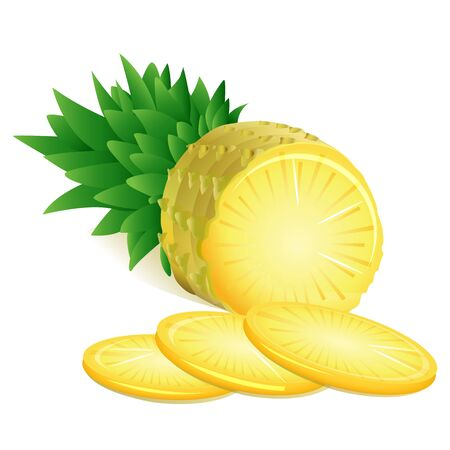 illustration of pineapple on white background Stock Vector - 9438589